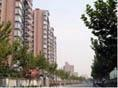 上海市民政第一精神病院